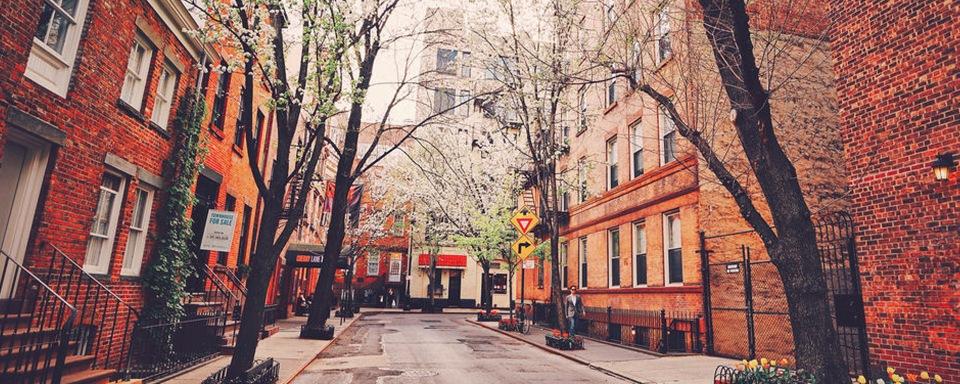 Noah Waxman West Village NYC shop local theatres